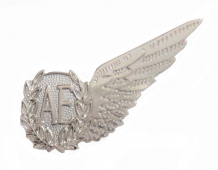 Air Electronics Operator Royal Air Force RAF MOD Single Wing Nickel Pin Badge / Brevet